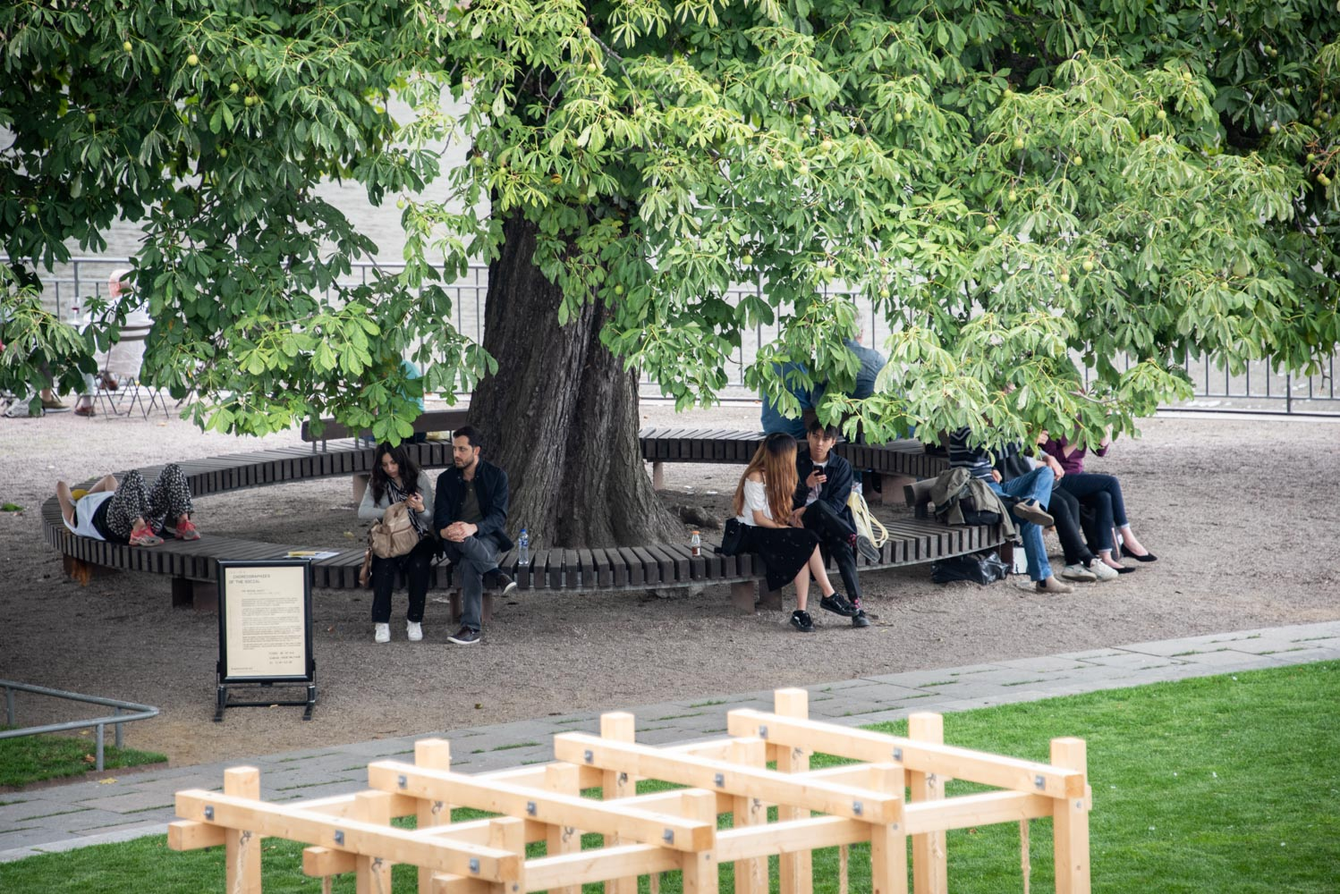 People in a park, sitting next to a large tree. In the forefront a tree construction.