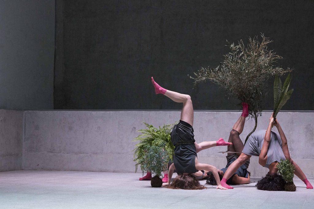 En lokal med svart bakgrund där några personer står på huvudet kring några växter.